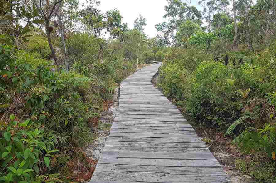 Top 5 Beach Walking Tracks in Australia