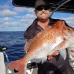 Best Bait For Beach Fishing Queensland